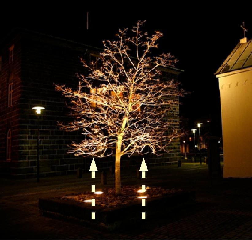 EXAMPLE: Up-lighting