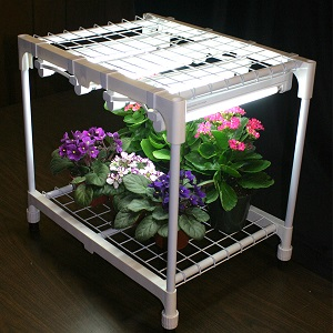 A Grow Light Extends Daylight Growing Hours And Stimulates