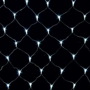 Net-Light