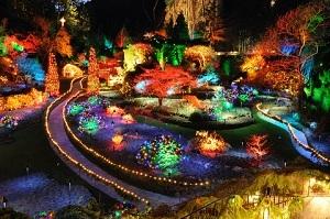 Coloured Lighting